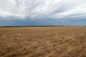 Photo: Oklahoma Tall Grass Prairie, by Dan Satterfield (Blogs.AGU.org)