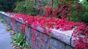 Hudson River bike path, October 2014